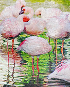 Lizi Beard-Ward - Rainy Day Flamingos 2