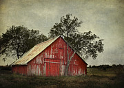 Wooden Building Prints - Red barn with a tree Print by Elena Nosyreva