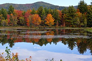 Kerri Mortenson - Reflections of Fall