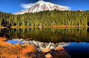 Mt Rainier National Park Prints - Reflections Of Mt Rainier Print by Adam Jewell