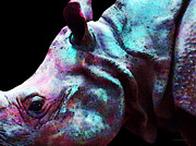 Rhinos Posters - Rhino 1 - Rhinoceros Art Prints Poster by Sharon Cummings