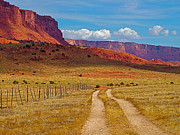 Northern Colorado Digital Art Prints - Road into Vermilion Cliffs National Monument-AZ Print by Ruth Hager