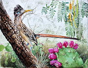 Roadrunner Paintings - Roadrunner by Sue Sill
