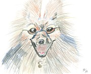 Fairies Drawings Posters - Roo the Faerie Dog Poster by Lisa Holman