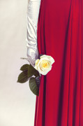Frock Photo Posters - Rose Poster by Joana Kruse