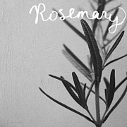 Black And White Photography Mixed Media - Rosemary by Linda Woods