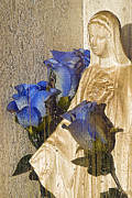 Rosary Prints - Roses and the Immaculate Heart of Mary La Jara Cemetery Colorado 2012 Print by John Hanou