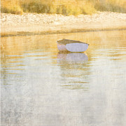 Rowboat Digital Art Posters - Rowboat in the Summer Sun Poster by Carol Leigh