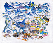 Carey Chen - Russ Smiley gamefish collage
