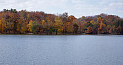 Indiana Art Posters - Scales Lake in Autumn Poster by Sandy Keeton
