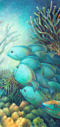 Parrot Fish Metal Prints - Sea Folk III - Blue Tang Metal Print by Nancy Tilles