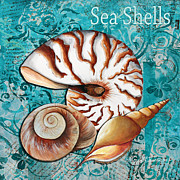 Rust Paintings - Sea Shells Original Coastal Painting Colorful Nautilus Art by Megan Duncanson by Megan Duncanson