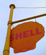 Shell Sign Art - Shell Hanging Sign by Randall Weidner
