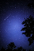 Perseid Metal Prints - Shooting Star and Satellite Metal Print by Thomas R Fletcher