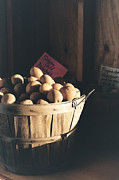 Farmstand Photo Metal Prints - Sierra Gold Metal Print by Caitlyn  Grasso