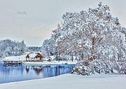 Winter Prints Framed Prints - Silence after the Storm - North Carolina I Framed Print by Dan Carmichael