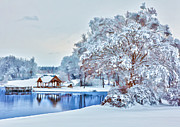 Winter Prints Posters - Silence after the Storm - North Carolina II Poster by Dan Carmichael