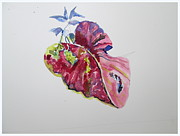 Red Leaf Drawings - Single Leaf by Mindy Newman