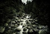 World Rock Posters - Small River In A Forest Flowing Poster by Evgeny Kuklev