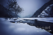 White River Scene Prints - Small River In The Misty, Snowy Print by Evgeny Kuklev