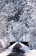 Germany Prints - Snowy bridge Print by Jorge Maia