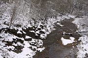Jane Eleanor Prints - Snowy Landscape - a stream by the woods Print by Jane Eleanor Nicholas