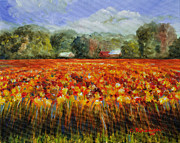 Solebury Framed Prints - Solebury Autumn Framed Print by Cindy Roesinger