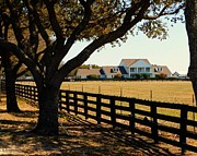 Robert ONeil - Southfork Ranch - Across the Pasture