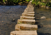 Stepping Stones Prints - Stepping Stones at Lealholm Print by Trevor Kersley