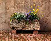 Kaysersberg Photos - Stone Planter in Kaysersberg France by Greg Matchick