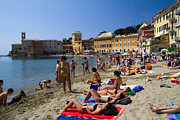 Tourist Destination Framed Prints - Sun bathers in Sestri Levante in the Italian Riviera in Liguria Italy Framed Print by David Smith