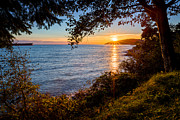 Grassland Photo Posters - Sunset over Lighthouse Park Poster by Alexis Birkill