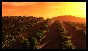 Vineyard Landscape Mixed Media Framed Prints - Sunset Over the Valley Framed Print by Tim Fillingim