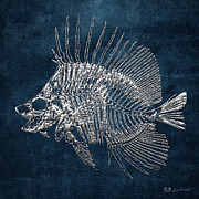 Surgeonfish Posters - Surgeonfish Skeleton in Silver on Blue  Poster by Serge Averbukh