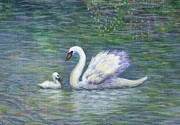 Swan Art - Swan and One Baby by Linda Mears