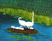 Barbara Griffin - Swan Family