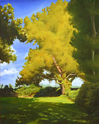Tree. Sycamore Paintings - Sycamore by Gary  Hernandez