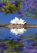 Purple Flowers Digital Art - Sydney Opera House with jacaranda reflection by Sheila Smart