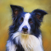Collie Digital Art Posters - Taj - Border Collie Portrait Poster by Michelle Wrighton