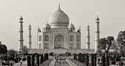Refection Prints - Taj Maha BW Print by Linda Phelps
