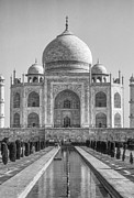 Steve Harrington - Taj Mahal monochrome