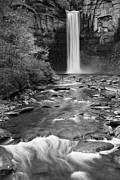 Buttermilk Falls Art - Taughannock Monochrome I by Michele Steffey