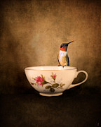 Tiny Bird Photos - Tea Time With a Hummingbird 2 by Jai Johnson
