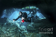 Technical Prints - Technical Divers Enter The Cavern Print by Karen Doody