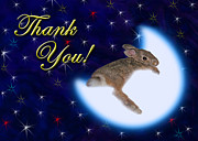 Jeanette Kabat - Thank You Bunny Rabbit