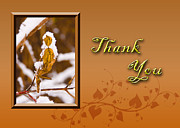 Jeanette Kabat - Thank You Leaf