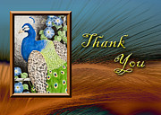 Jeanette Kabat - Thank You Peacock