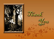 Jeanette Kabat - Thank You Willow Tree