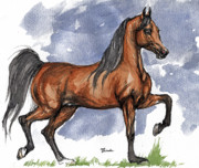 Run Drawings - The bay arabian horse 17 by Angel  Tarantella