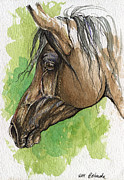 Horse Drawing Painting Prints - The Bay Arabian Horse 20 Print by Angel  Tarantella
